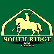 South Ridge Sign